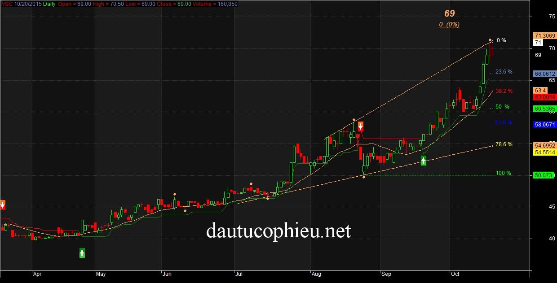 PTKT cổ phiếu VSC ngày 20/10/2015