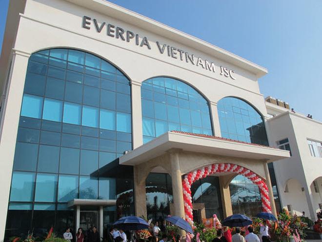 Everpia lãi 41 tỷ đồng trong 6 tháng, giảm 18% so với cùng kỳ
