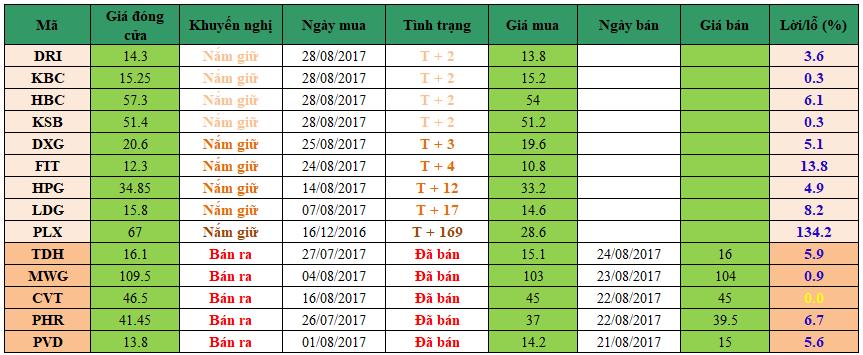Danh mục đầu tư dm3008