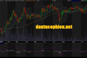 Cập nhật cổ phiếu CTD - Công bố KQKD 9 tháng sát kỳ vọng