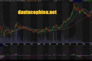 Cập nhật cổ phiếu PAC - Ước tính LNTT tăng 25,5% so với cùng kỳ