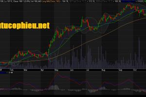 Cập nhật cổ phiếu PNJ - KQKD 9 tháng khả quan hơn kỳ vọng