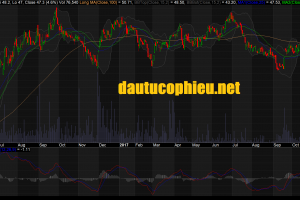 Cập nhật cổ phiếu VHC - Doanh thu xuất khẩu tháng 10 tăng mạnh sau khi giảm trong những tháng trước