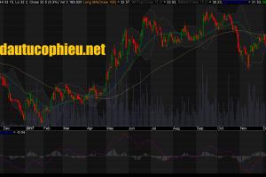 Cập nhật cổ phiếu - Công ty An Phát Holdings tăng sở hữu tại AAA lên 31,88%