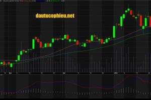 Đồ thị cổ phiếu NKG cập nhật ngày 31/012018. Nguồn: AmiBroker