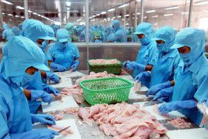 Cập nhật ngành thủy sản – Đề án mới cho chiến lược phát triển bền vững của ngành cá tra Việt Nam