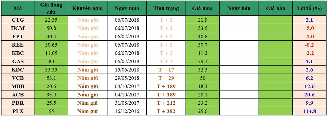 Danh mục đầu tư dm1007