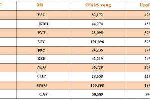 Cập nhật tình hình thị trường thế giới và Việt Nam tuần từ 23/07/2018 – 29/07/2018