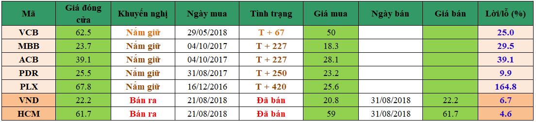 Danh mục đầu tư dm3108