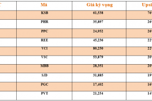 Cập nhật tình hình thị trường thế giới và Việt Nam tuần từ 01/10/2018 – 07/10/2018