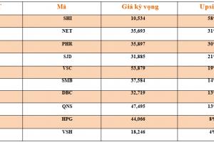 Cập nhật tình hình thị trường thế giới và Việt Nam tuần từ 08/10/2018 – 14/10/2018