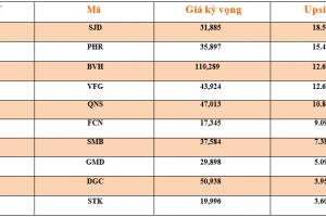 Cập nhật tình hình thị trường thế giới và Việt Nam tuần từ 19/11/2018 – 25/11/2018