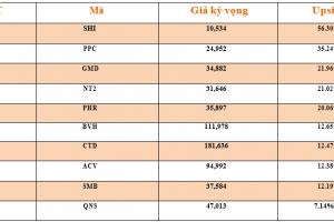 Cập nhật tình hình thị trường thế giới và Việt Nam tuần từ 10/12/2018 – 16/12/2018