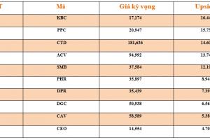 Cập nhật tình hình thị trường thế giới và Việt Nam tuần từ 17/12/2018 – 23/12/2018
