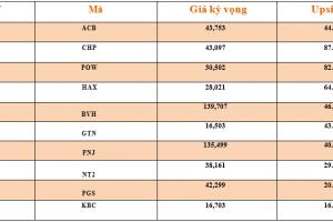 Cập nhật tình hình thị trường thế giới và Việt Nam tuần từ 11/02/2019 – 17/02/2019