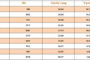 Cập nhật tình hình thị trường thế giới và Việt Nam tuần từ 04/02/2019 – 10/02/2019