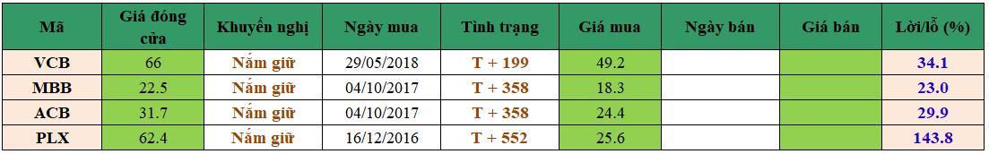 Danh mục đầu tư dm1503