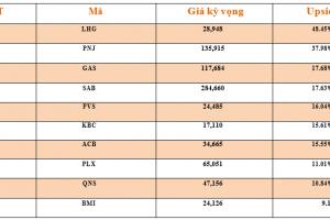 Cập nhật tình hình thị trường thế giới và Việt Nam tuần từ 11/03/2019 – 17/03/2019