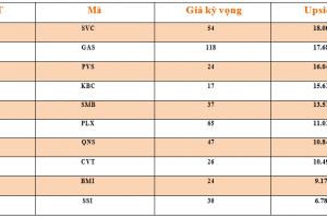 Cập nhật tình hình thị trường thế giới và Việt Nam tuần từ 25/02/2019 – 03/03/2019