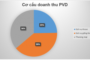 Cập nhật cổ phiếu PVD - Mảng kinh doanh cốt lõi sẽ hết lỗCập nhật cổ phiếu PVD - Mảng kinh doanh cốt lõi sẽ hết lỗ
