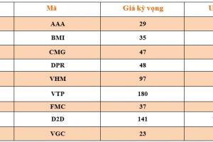 Cập nhật tình hình thị trường thế giới và Việt Nam tuần từ 22/07/2019 – 28/07/2019