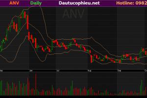 Cập nhật cổ phiếu ANV – Khuyến nghị Mua vào với giá mục tiêu 35.400đ/cp