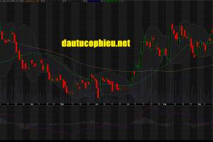 Cập nhật cổ phiếu BMP – Ước tính KQKD 9 tháng