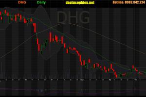 Cập nhật cổ phiếu DHG – LNST 9 tháng đầu năm 2019 giảm 5% so với cùng kỳ