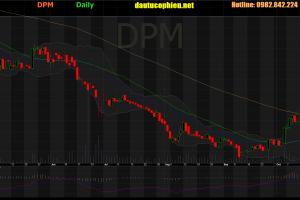 Cập nhật cổ phiếu DPM – LNST 9 tháng năm 2019 giảm 73,9% so với cùng kỳ