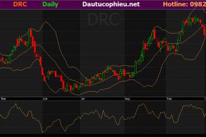 Cập nhật cổ phiếu DRC - KQKD 9 tháng tích cực hơn mong đợi