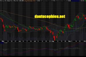 Cập nhật cổ phiếu DXG - Kết quả kinh doanh 9 tháng đầu năm tăng trưởng mạnh