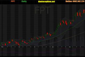 Cập nhật cổ phiếu FPT - Công bố KQKD 9 Tháng đầu năm tăng 30%