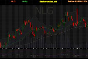 Cập nhật cổ phiếu PPC - Công bố LNST tăng 18% so với cùng ký năm ngoái