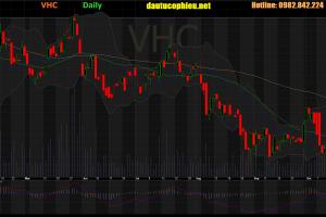 Cập nhật cổ phiếu VHC – LNST 9 tháng năm 2019 giảm 5% so với cùng kỳ