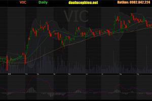 Cập nhật cổ phiếu VIC - Mua lại toàn bộ 10,5% cổ phần tại SDI thông qua hoán đổi cổ phiếu tỷ lệ 1:1,1