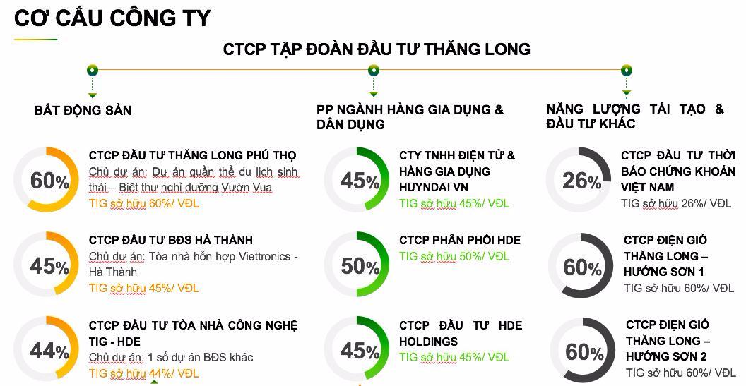 Khuyến nghị đầu tư Công ty Cổ phần Tập đoàn Đầu tư Thăng Long – TIG