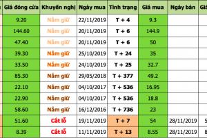 Danh mục đầu tư 2019-11-28 at 3.07.46 PM