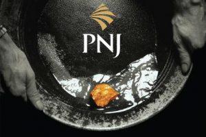 Cập nhật cổ phiếu PNJ - Tiếp tục đà tăng trưởng mạnh mẽ