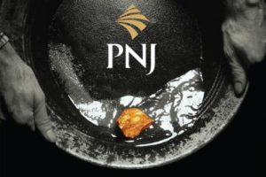 Cập nhật cổ phiếu PNJ - Động lực tăng trưởng chậm lại do dịch Covid 19