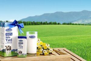 Cập nhật cổ phiếu VNM - Tiêu thụ sữa dần phục hồi Giá sữa bột thấp sẽ hỗ trợ biên lợi nhuận