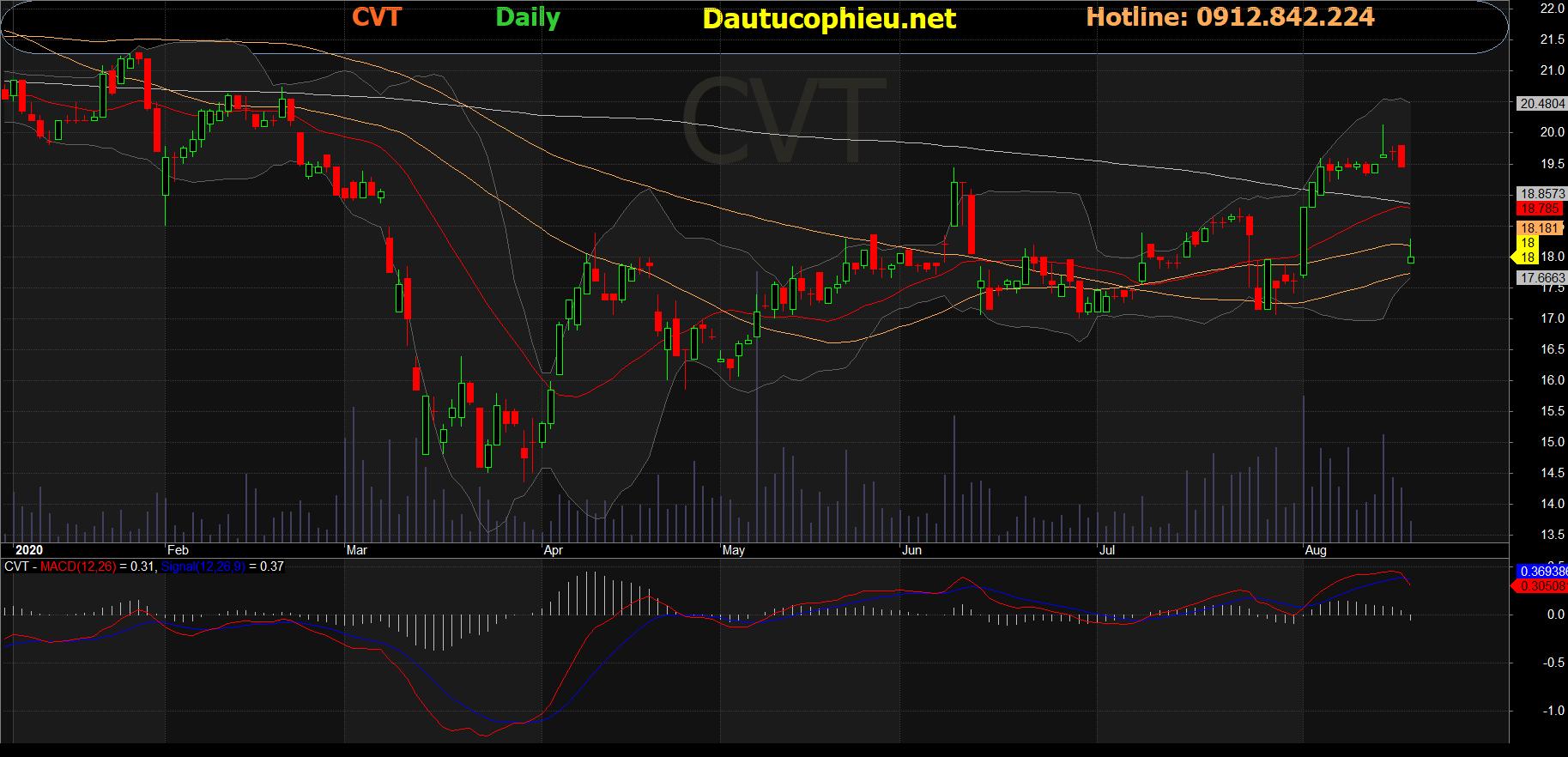 Cổ phiếu CVT