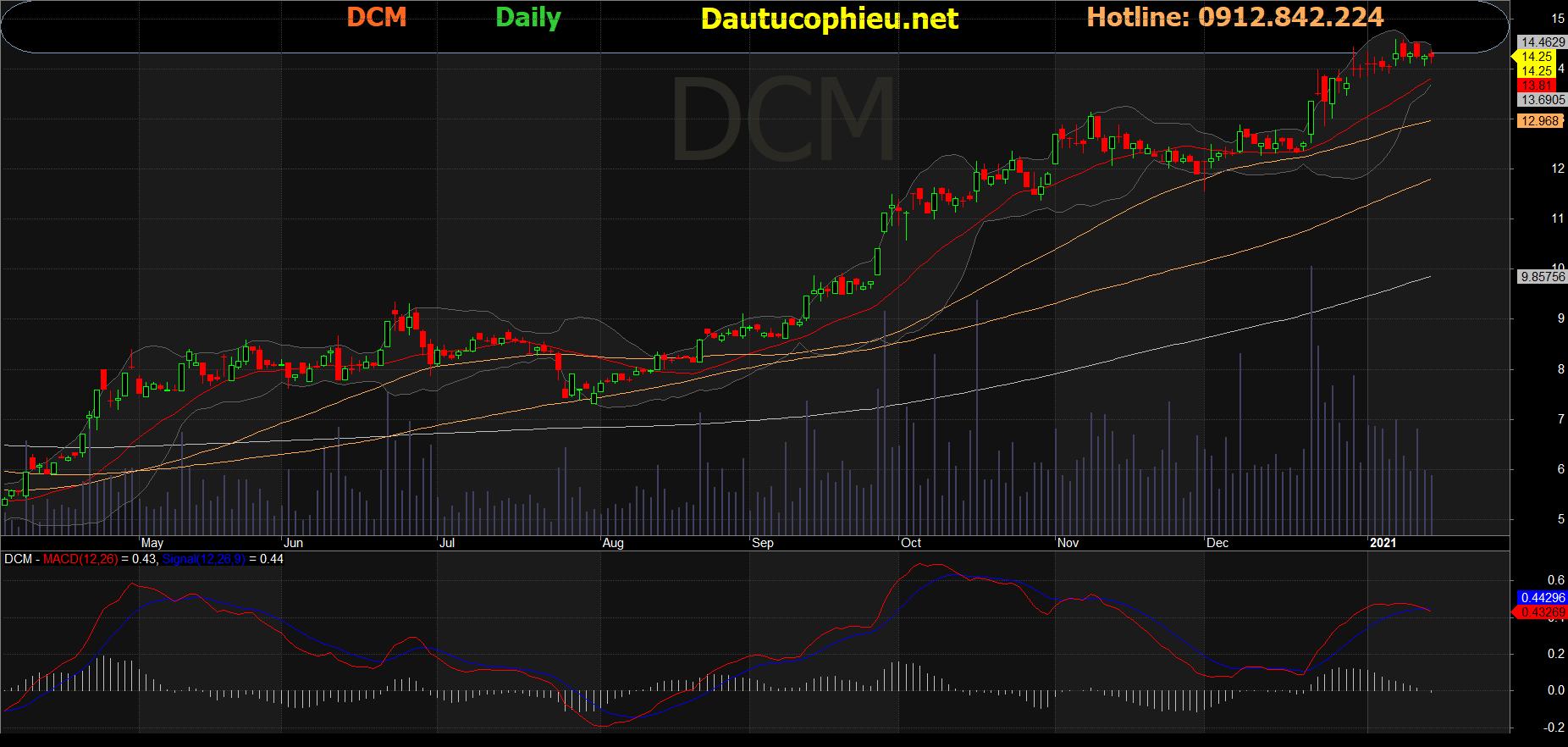 Cổ phiếu DCM