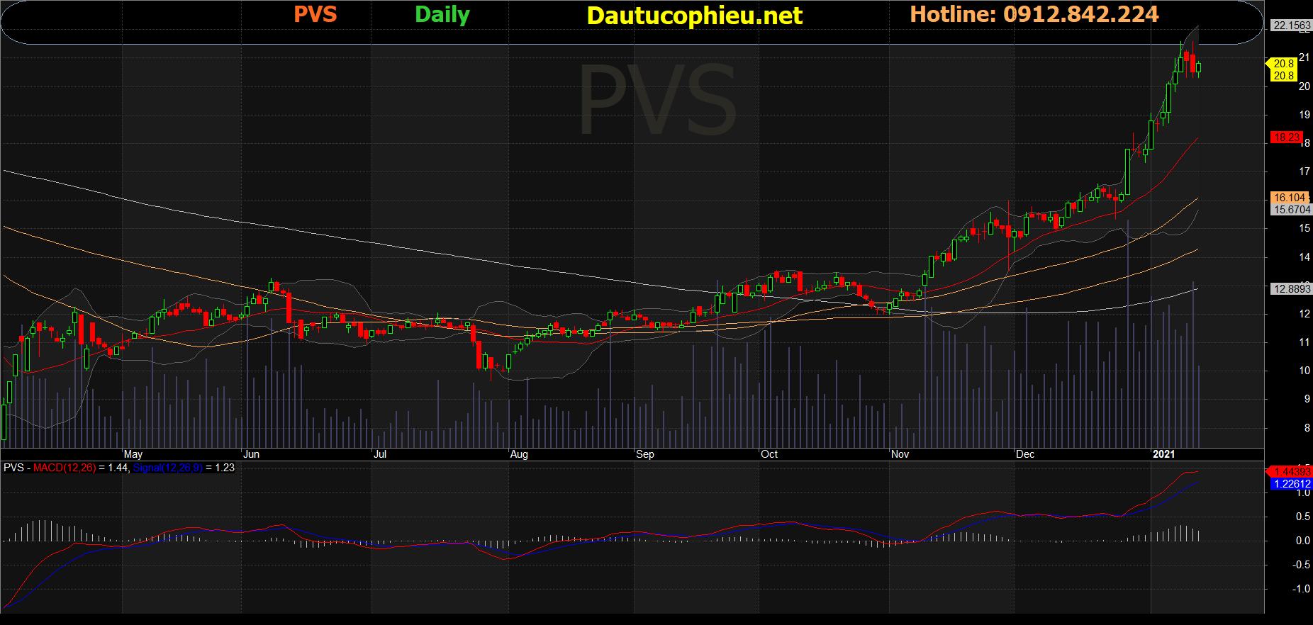 Cổ phiếu PVS