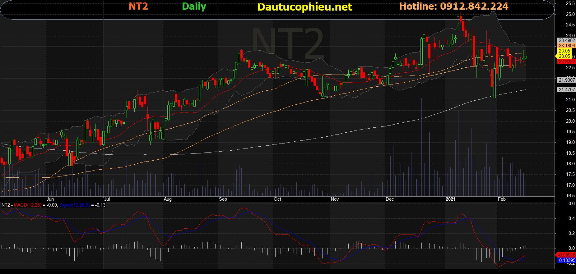 Cổ phiếu NT2