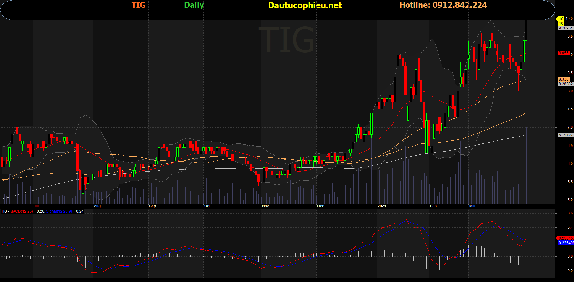 Cổ phiếu TIG