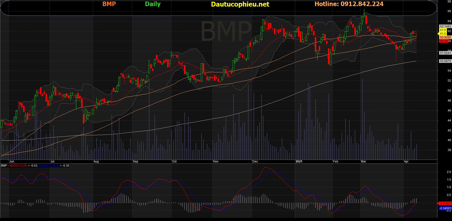 Cổ phiếu BMP