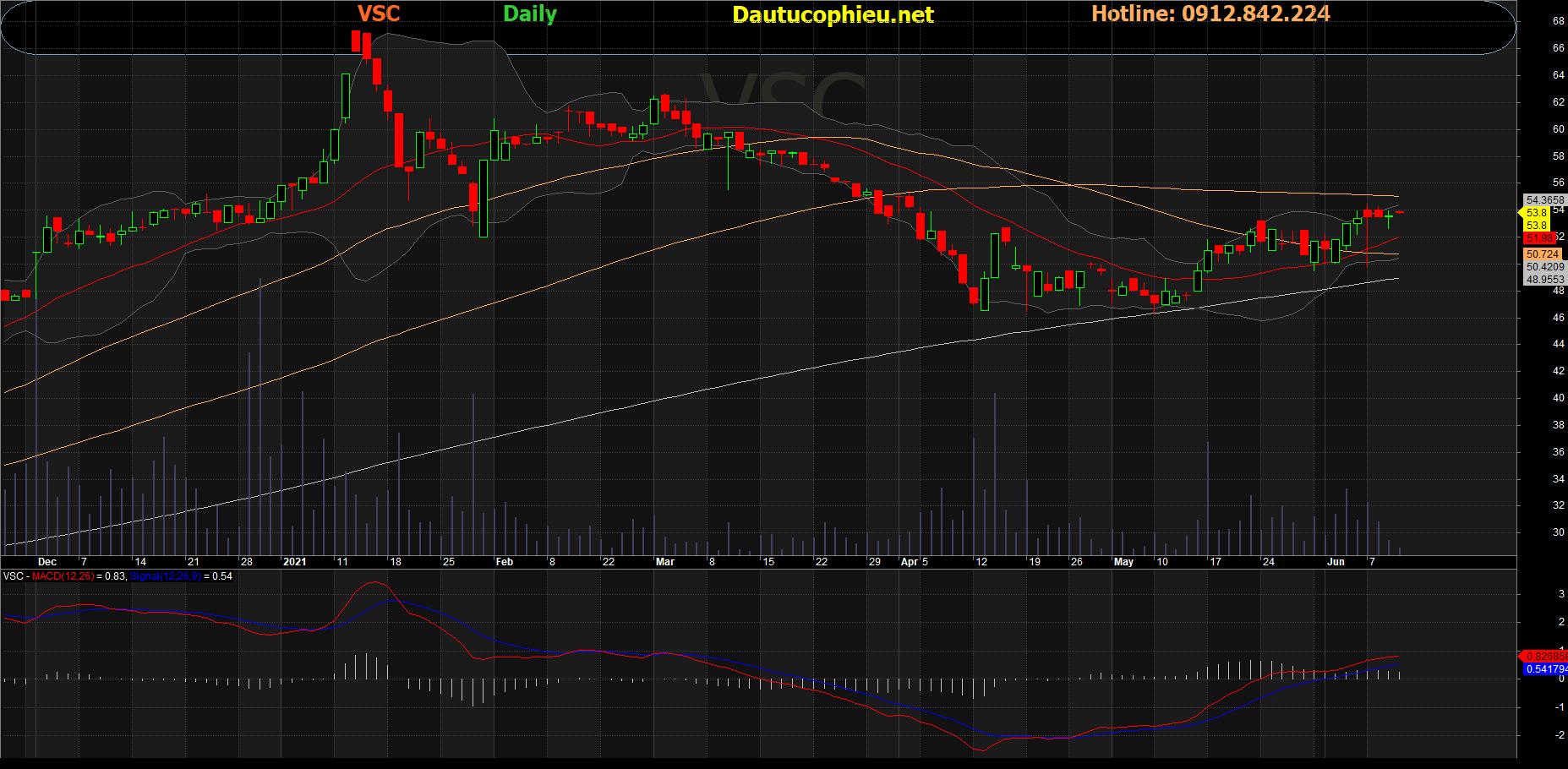 Cổ phiếu VSC
